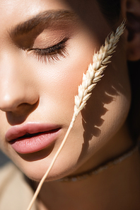 close up of young woman with closed eye near wheat spikelet
