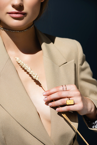 cropped view of woman in necklace and rings holding wheat spikelet on dark grey