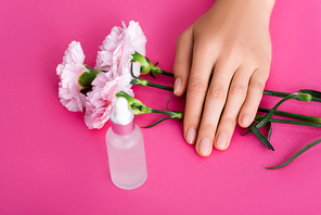 cropped view of female hand near bottle of cuticle remover and carnation flowers on pink background