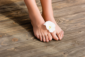 female feet with glossy pink nail polish on toenails, and white eustoma flower on brown wooden surface