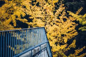 가을 문턱